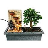 Indoor-Bonsai mit Zimmer-Brunnen 'Buddha mit 4 Schalen' - beleuchtet - Easy Care System