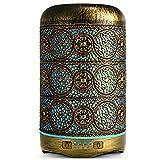 SALKING Aroma Diffuser, 260ml Metall Aromatherapie Diffusor für ätherische Öle,...