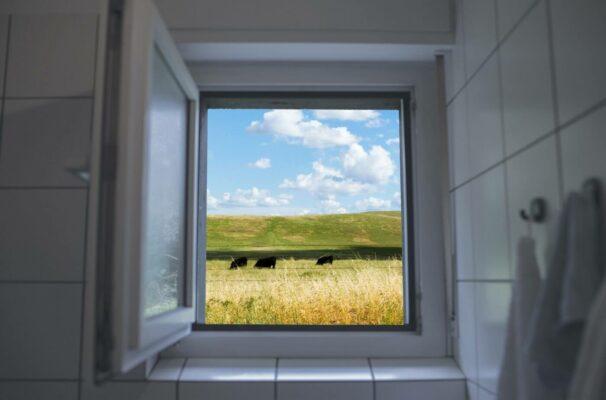 Richtig lüften: Öffnen Sie die Fenster weit und sorgen Sie für Durchzug.