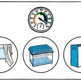 Luftfeuchtigkeit Senken Mit Diesen Tipps Gelingt Es Luftbewusst De