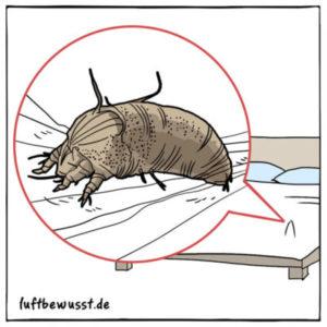 beste Mittel gegen Milben bei Hausstaubmilbenallergie