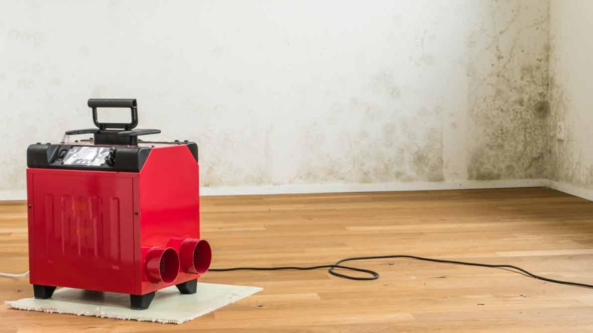 Kühlschrank Entfeuchter : Luftentfeuchter 2019 ratgeber & test » die besten modelle im vergleich
