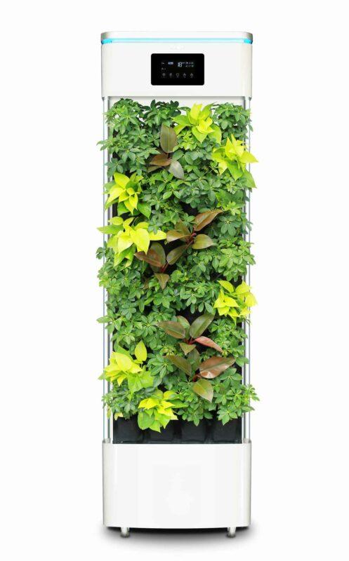 Smarte Luftreiniger-Pflanze