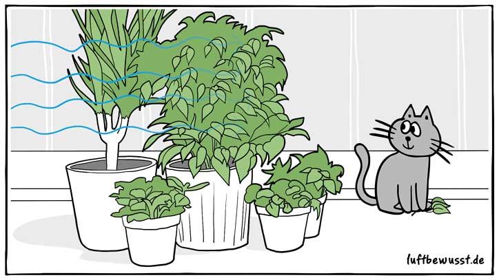 Pflanzen helfen gegen Elektrosmog